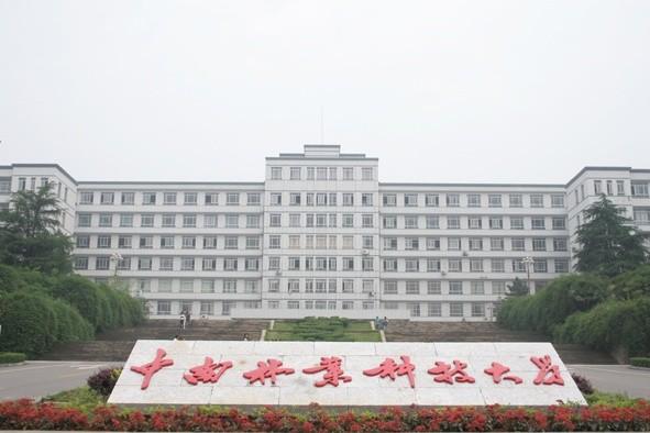 中南林业科技大学国际学院
